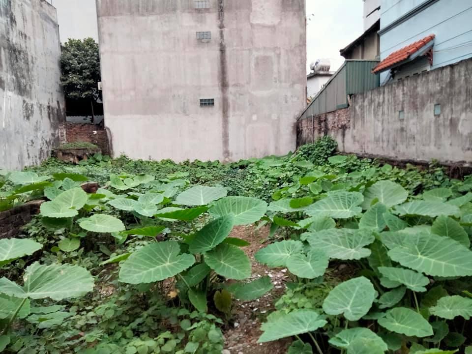 Bán đất ngõ 29 phố trạm Long Biên Hà Nội 140m, MT 7m,giá 11tỷ5 lh0968181902.
