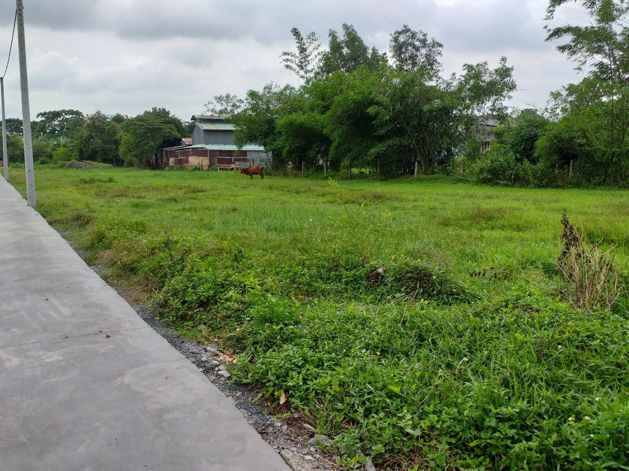 bán đất chính chủ gần khu du lich bửu long