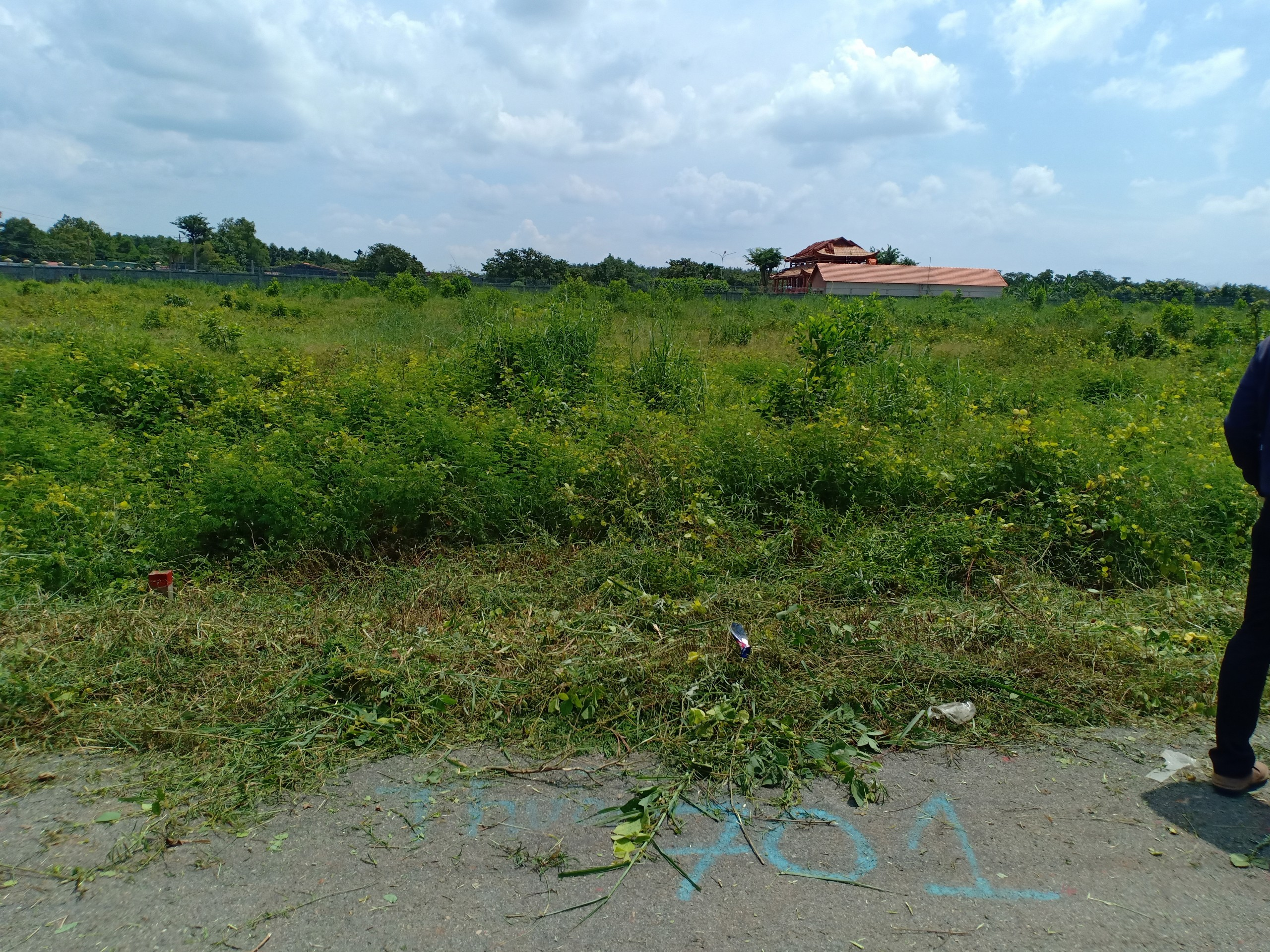 Chính Chủ Cần Bán Gấp (5x43)  Ấp 1 , Xã Tóc Tiên , Thị Xã Phú Mỹ , Tỉnh Bà Rịa - Vũng Tàu .